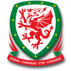 Wales national football team Emblem